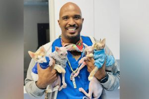 A smiling vet holding 4 cats.