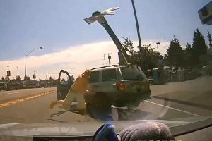 dashcam footage showing axe about to hit victim's windshield with shirtless man who threw it standing behind